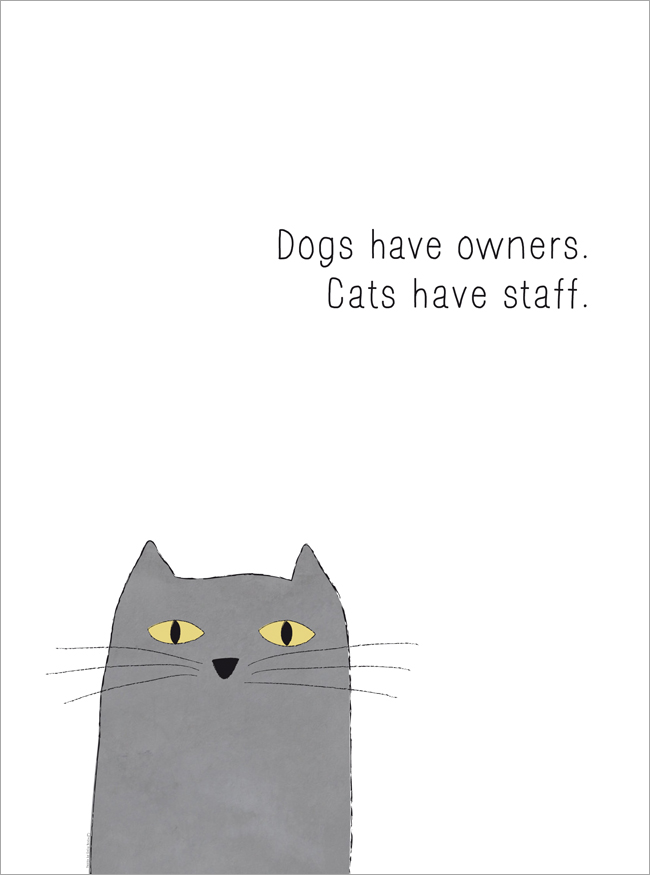 hundar har ägare, katter har personal